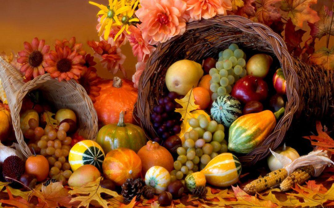 How Do I Grow in Joy? Grow in Thankfulness